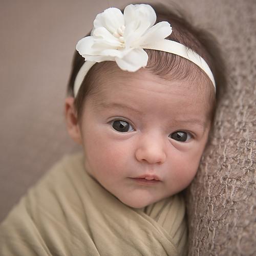 Newborn Leona - 11 dias