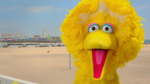 SESAME STREET - BIG BIRD ROAD TRIP