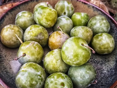 Tkemali , la sauce aux prunes Géorgienne