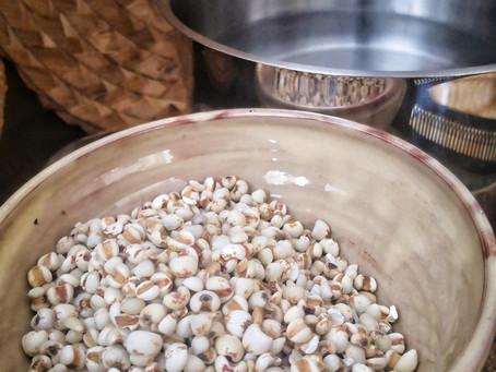 L'Orge , une graine sacrée  & l'eau d'orge pleine de bienfaits ...