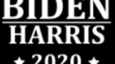 Adult Face mask 😷 Biden Harris *2020*