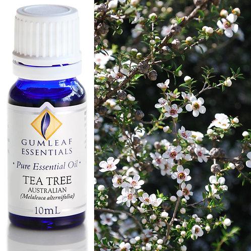 Tea Tree Australian Essential Oil