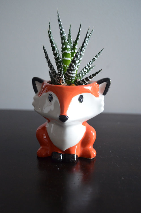 FOX PLANTER WITH SUCCULENT