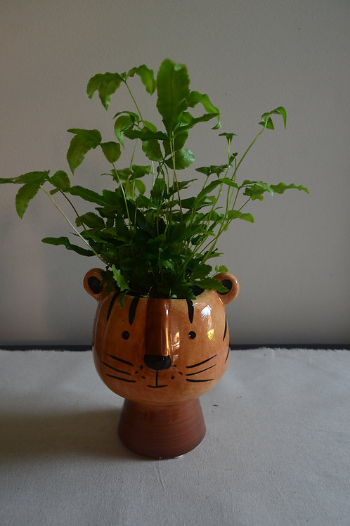 TIGER PLANTER WITH FERN
