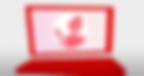 Screen Shot 2020-05-12 at 4.50.14 PM.png