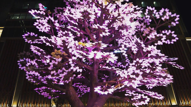 Tree of Light -灯桜-