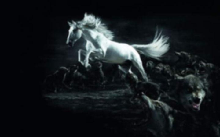 wallpaper-horse-illustration-02.jpg