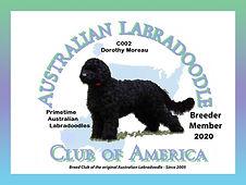 Member Logo 2020 Dorothy.jpg