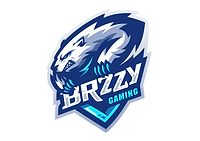 Brzzy Gaming-01 main.png