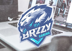Brzzy%20Gaming-01%20main_edited.jpg