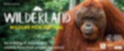 Wilderland web image (002).jpg
