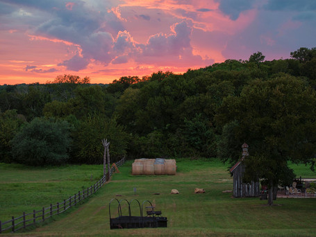 Images from the Ranch