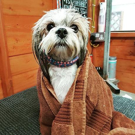 #doggybathtime #wrappedup #lhasaapso #do