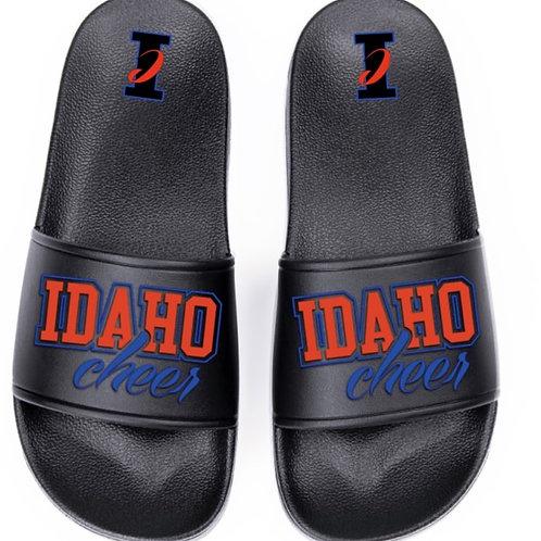 Idaho Cheer Slides