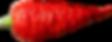 Devil's%20Brain_edited_edited.png