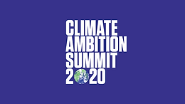 Climate Ambition 2020