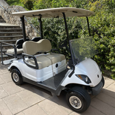 2009 Yamaha YDRE 48v Electric Golf Cart