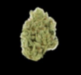 Gorilla-Glue-Flower.png
