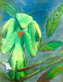 The secret heart of the praying mantis