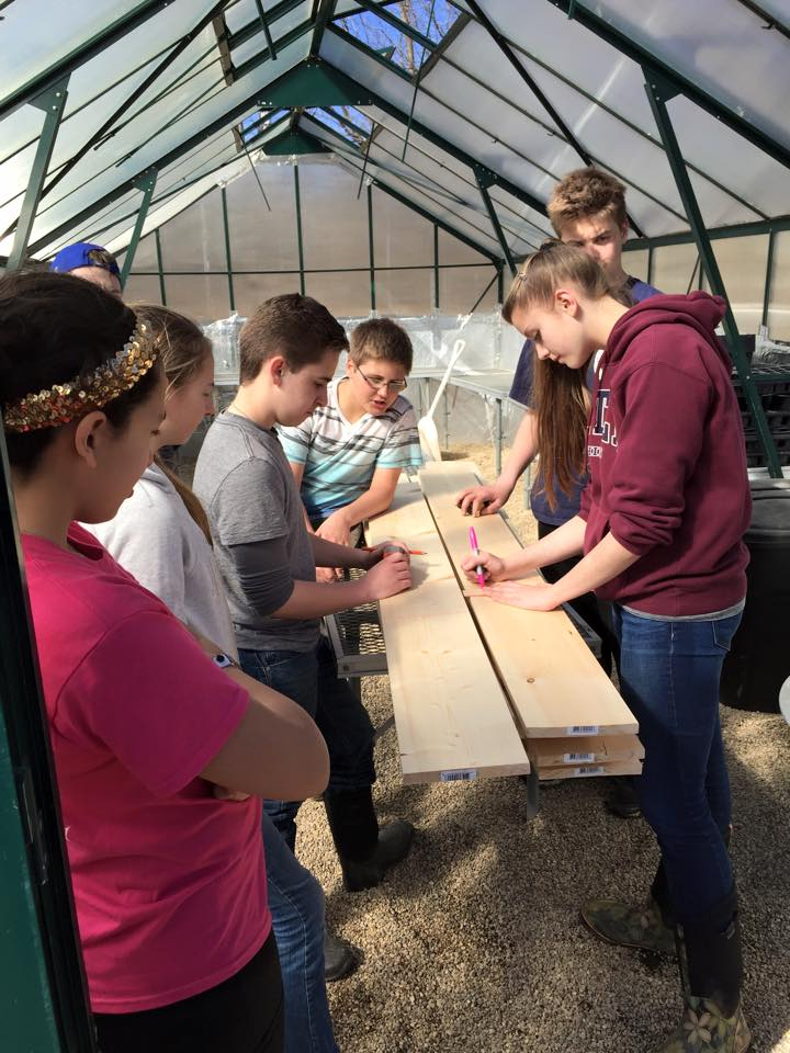 Real work - planning greenhouse