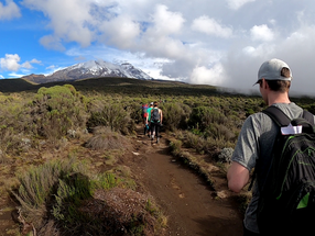 Quick tips on Mount Kilimanjaro (Lemosho route) and why I failed to reach the summit