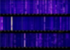 Screenshot 2020-02-18 at 15.30.25.png