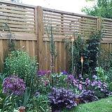 fence panels.jpg