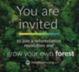 grow-your-own-forest-meme-two.png
