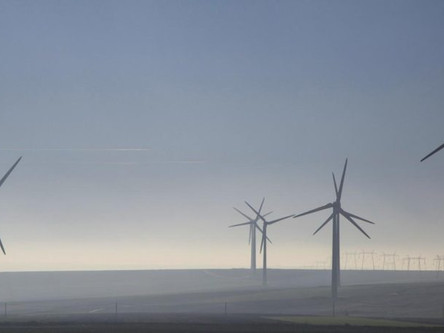 """Para atingir a neutralidade de carbono, mundo precisa de planos """"limpos e viáveis"""""""