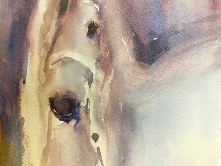 Paint the Horse
