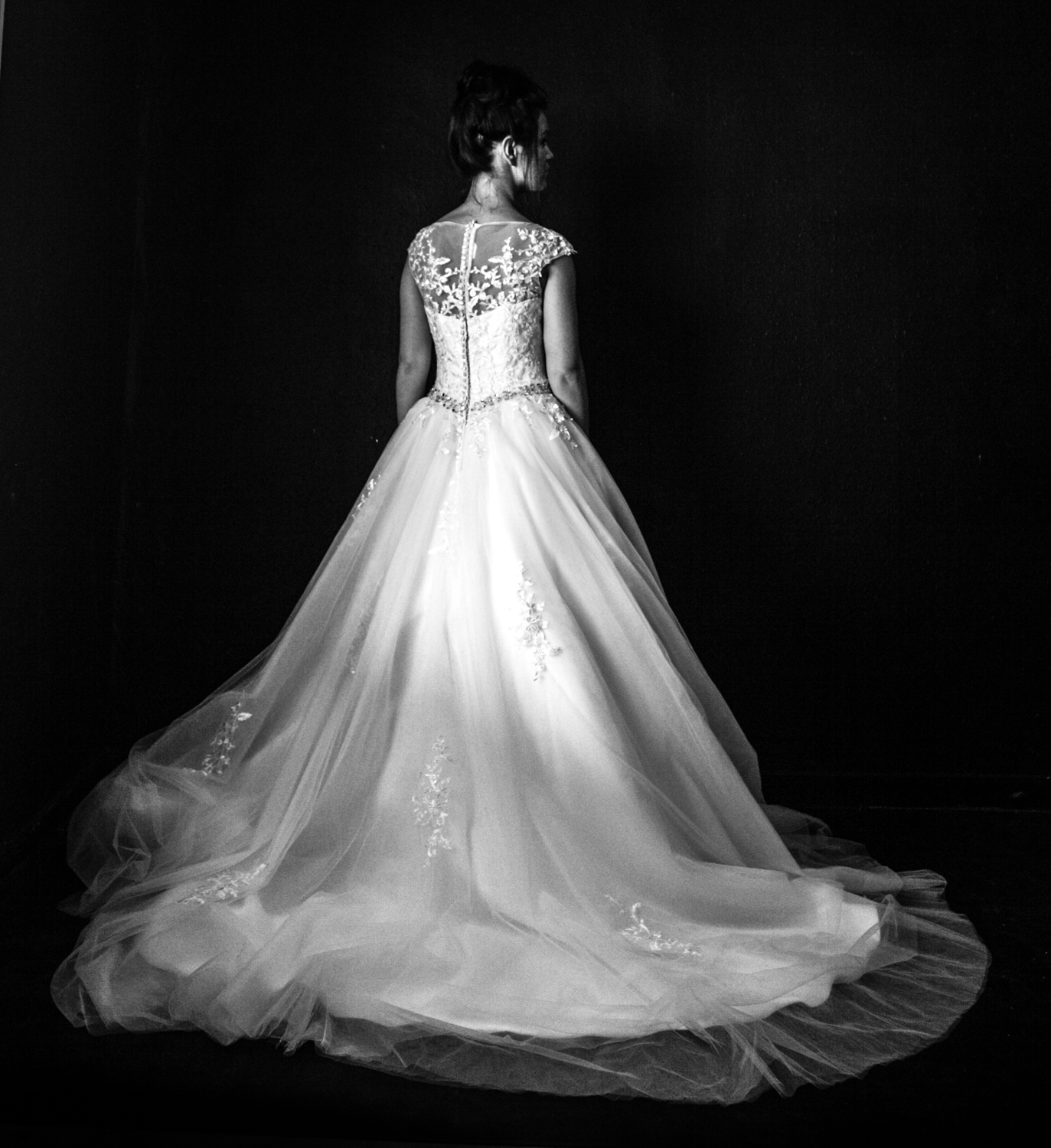 BLUE ROSE Bridal Tuxford