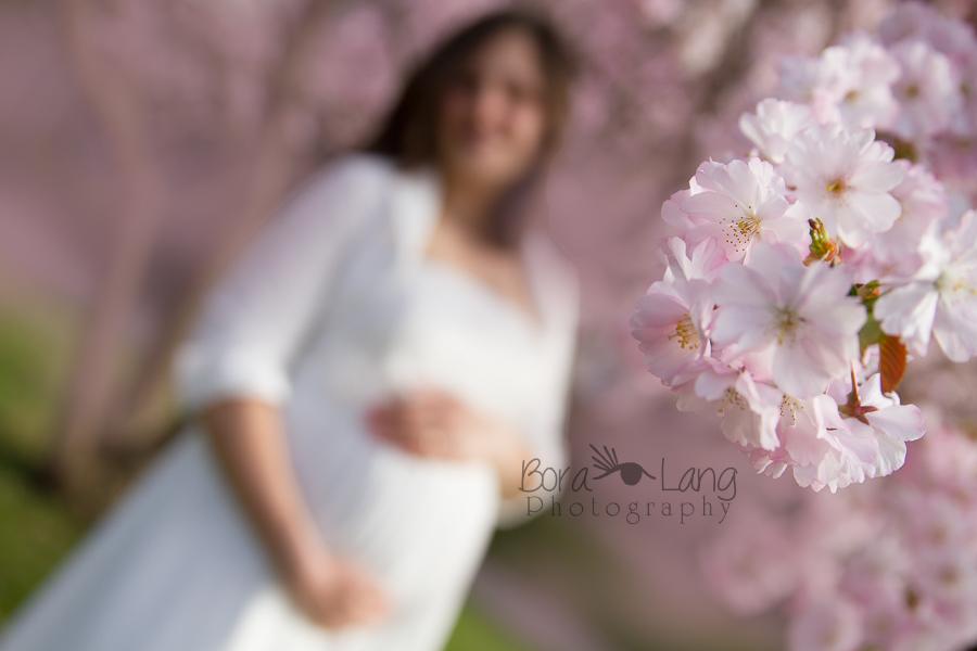 Frühlings Schwangerschaft