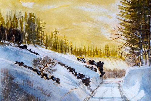 Winter Day, Elan Valley