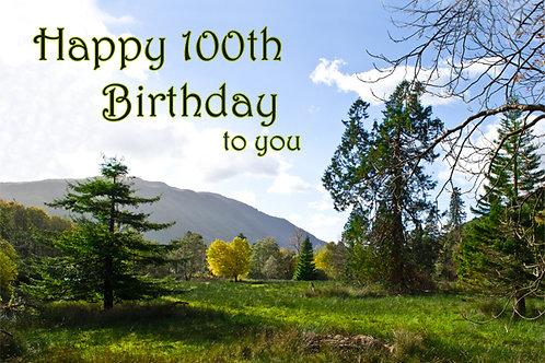 100th Birthday Scenery around Cadair Idris