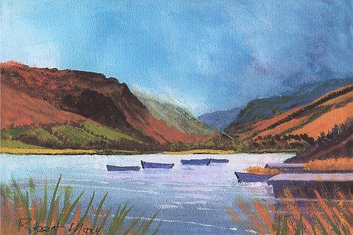 Tal y Llyn Boats