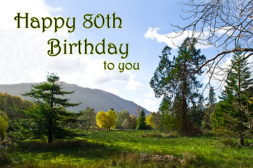 80th Birthday Scenery around Cadair Idris