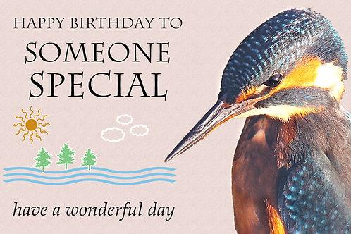Brian Kingfisher Birthday