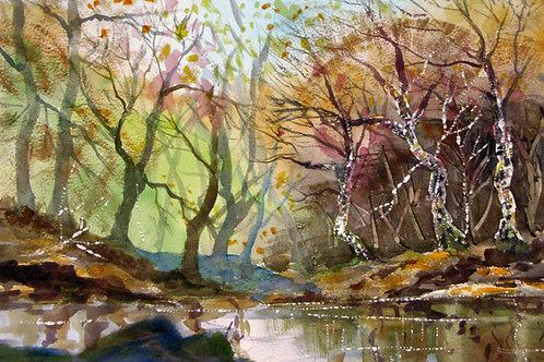 Afon Cadair near Cadair Idris