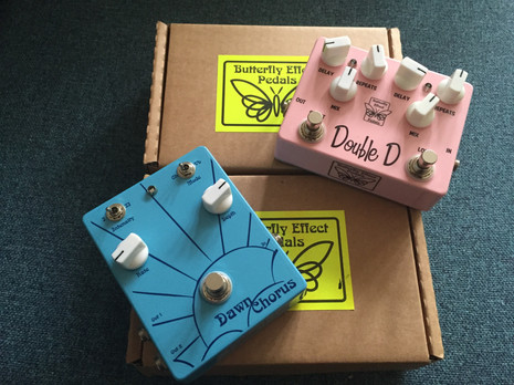 Nick Robinson Guitarist Butterfly Effect Pedals
