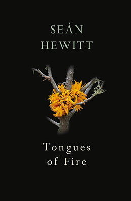 Tongues of Fire COVER.jpg
