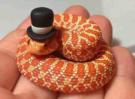 A Geração Cobra Capelo