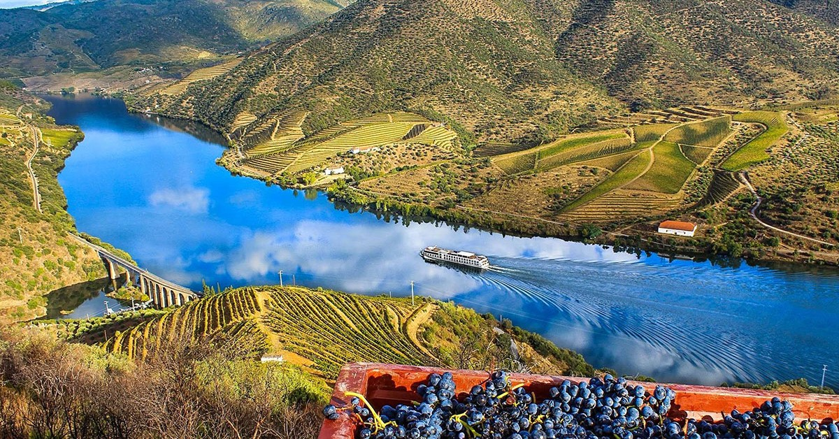 Douro - North of Portugal