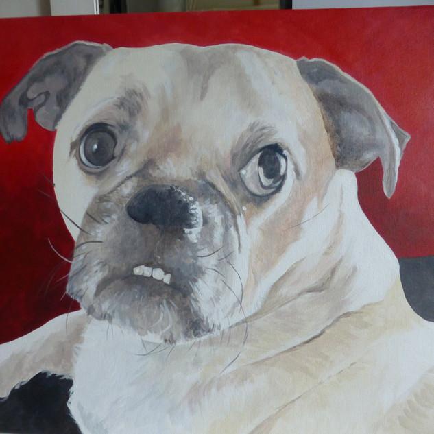 pug painting.JPG