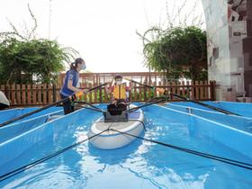 第64屆體育節賽艇夏日祭 觀塘發現號03化身賽艇航道帶領市民投入全城運動熱潮 迎接奧運盛事