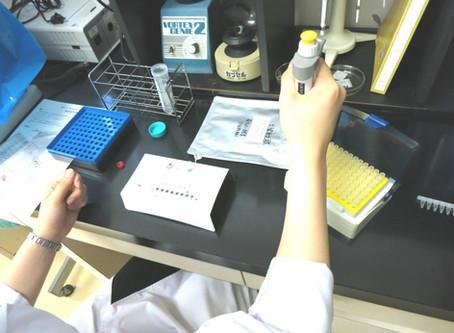 眼感染症網羅的 PCR 検査を導入しました