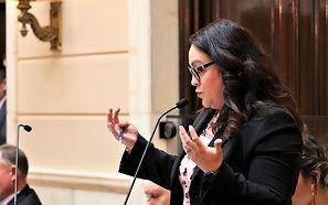 Luz Senate1.jpg