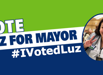 Top Reasons to Vote Luz