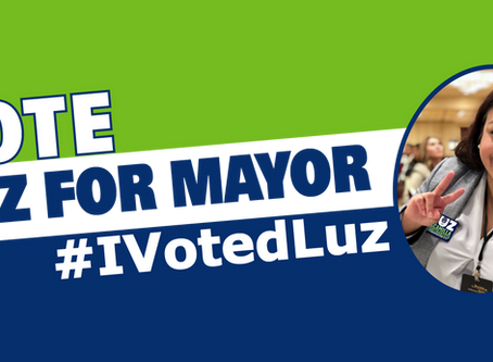 Top Reasons to Vote Luz