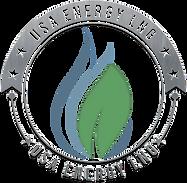 USA Energy LNG logo