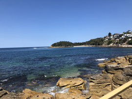 Manly Beach–January 21, 2020